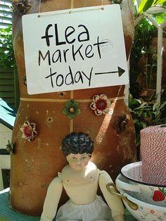 Flea Today
